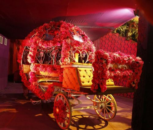 Unique Entrance Ideas for Wedding Reception for Couples 3