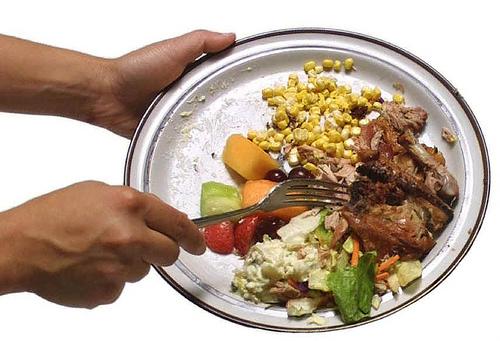 essay on colossal wastage of food in lavish indian weddings
