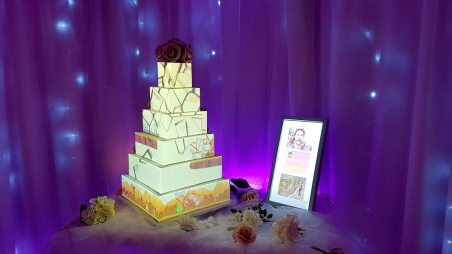 Video Projection Cake Angry Birds