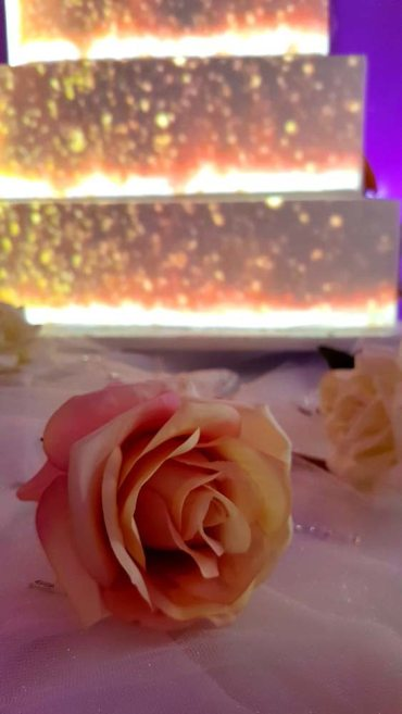 Video Projection Cake Rose Decoration