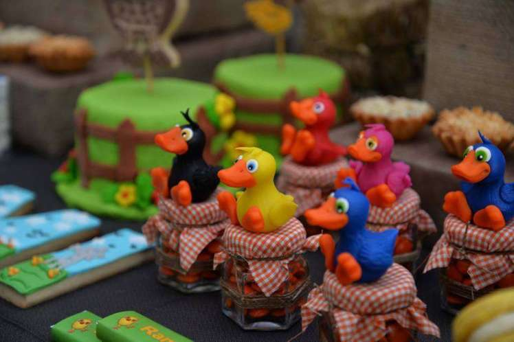 Farm Theme Birthday Party Decoration 4