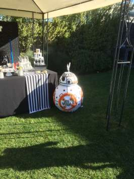 Star Wars Theme Birthday Party Decoration 1