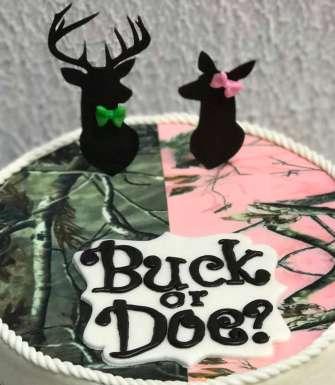 Buck or Doe Baby Shower Cake 2