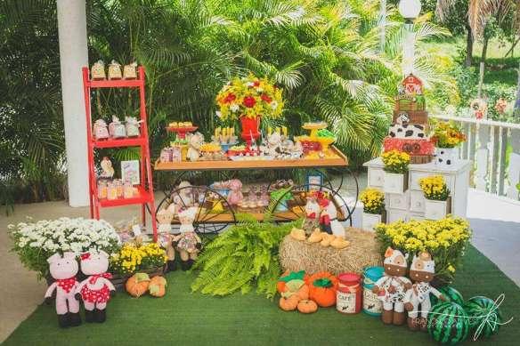 Farm Theme Birthday Party Venuemonk Blog
