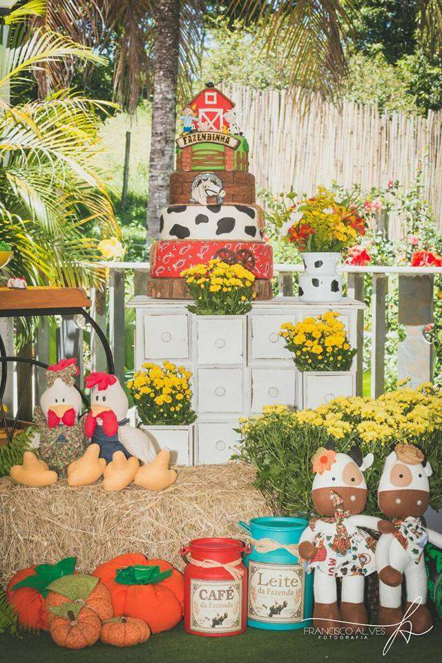 Farm Theme Birthday Party Decoration