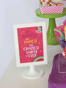 Trolls Theme Birthday Party Decoration 3
