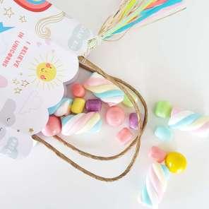 Rainbow and Unicorn Theme Birthday Party Return Gifts 1