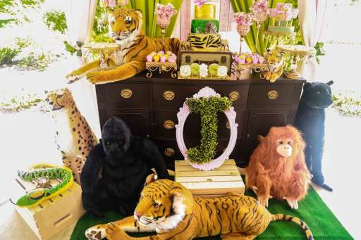 Rainforest Theme Birthday Party Decoration