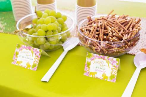 Rainforest Theme Birthday Party Food 6