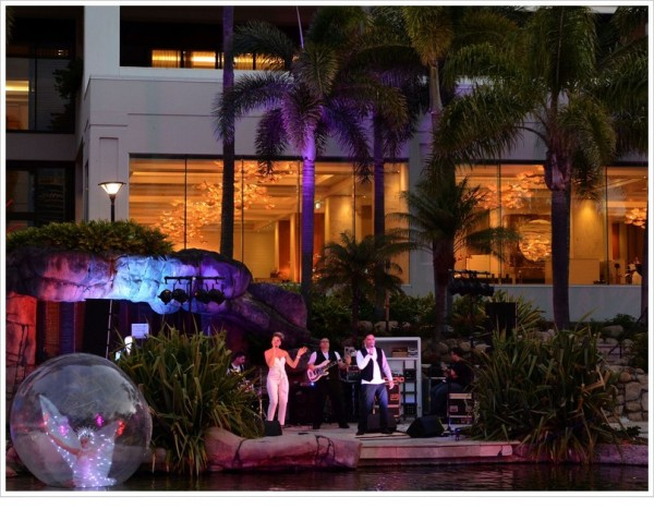 Live music entertainment for party